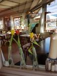Mittags kann man gut und lecker Essen gehen im Tennishaus & Restaurant in Sonthofen - Alle Restaurants, Café, Bar, Imbisse in und um Sonthofen mit wechselnden Mittagsangeboten und reichhaltiger Speisekarte
