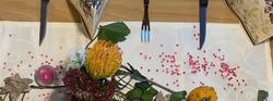 Gasthaus - Kiosk Seerose - immer gemütlich - leckere Gerichte - reichhaltige Speisekarte - Radtour Forggensee - Einkehrmöglichkeit - Event - Halblech