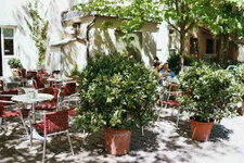 Cafe Walfisch Mittagsmenü auf der Terrasse. Mittags gut und lecker Essen gehen in und um Wangen - Ob Restaurant, Café, Bar, Imbisse, Gsthaus in Wangen gibt es viele Lokel mit mit wechselnden Mittagsangeboten so wie im Café Walfisch